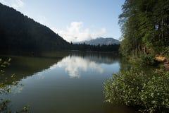 Ajardine a vista de Karagol (lago preto) em Savsat, Artvin, Turquia Fotos de Stock Royalty Free