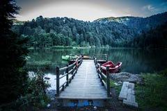 Ajardine a vista de Karagol (lago preto) em Savsat, Artvin, Turquia Imagens de Stock