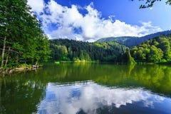 Ajardine a vista de Karagol (lago preto) em Savsat, Artvin, Turquia Foto de Stock Royalty Free