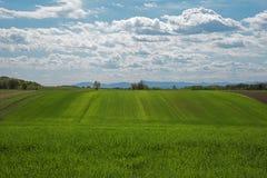 Ajardine a vista de uma terra com céu nebuloso Fotos de Stock Royalty Free
