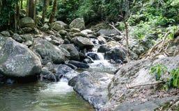 Ajardine a vista do córrego da água perto da cachoeira no verão, Tailândia, Fotos de Stock
