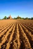 Ajardine a vista do campo e dos templos na área de Bagan, Myanmar Fotos de Stock