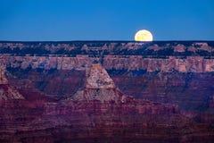 Ajardine a vista do Grand Canyon com lua de aumentação, o Arizona Fotos de Stock Royalty Free