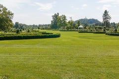 Ajardine a vista do jardim verde com flores e árvores Foto de Stock Royalty Free