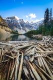 Ajardine a vista do lago e dos mountais moraine no canadense Montanhas Rochosas Imagens de Stock