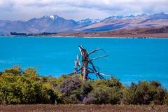 Ajardine a vista do lago Tekapo e das montanhas, Nova Zelândia Foto de Stock Royalty Free