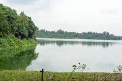 Ajardine a vista do rio e da floresta com céu azul Fotos de Stock