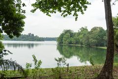 Ajardine a vista do rio e da floresta com céu azul Imagem de Stock Royalty Free