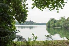 Ajardine a vista do rio e da floresta com céu azul Imagem de Stock