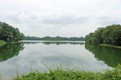 Ajardine a vista do rio e da floresta com céu azul Imagens de Stock Royalty Free