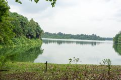 Ajardine a vista do rio e da floresta com céu azul Fotografia de Stock Royalty Free
