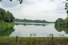 Ajardine a vista do rio e da floresta com céu azul Fotos de Stock Royalty Free