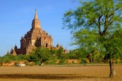 Ajardine a vista do templo de Sulamani com campo e fazendeiro, Myanmar Foto de Stock