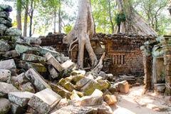 Ajardine a vista dos templos em Angkor Wat, Siem Reap, Camboja Imagens de Stock