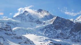Ajardine a vista em Jungfraujoh com fundo do céu azul Imagem de Stock
