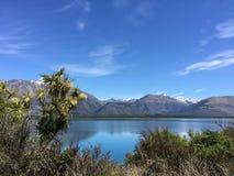 Ajardine a vista, no lago Wakatipu, Nova Zelândia Imagem de Stock Royalty Free