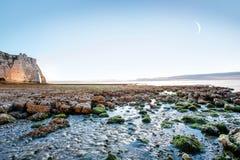 Ajardine a vista no litoral rochoso em Etretat Fotografia de Stock Royalty Free