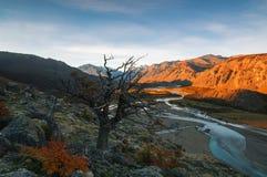 Ajardine a vista tomada durante uma caminhada no parque nacional do Los Glaciares do parque outono no Patagonia, lado de Argentin Fotografia de Stock