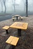 Ajedrez en la niebla Foto de archivo