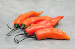 Aji amarillo hot chili peppers on stone background. Group of Peruvian aji amarillo hot chili peppers on stone background Stock Photos