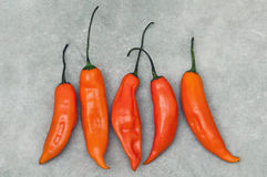 Aji amarillo hot chili peppers on stone background. Group of Peruvian aji amarillo hot chili peppers on stone background from above Stock Photo