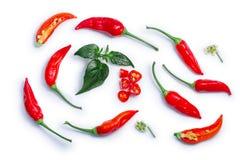Aji Brazilian Bonanza peppers, paths, top view Stock Image