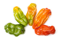 Aji dulce. Is a variety of sweet perennial peppers Stock Photos