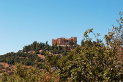 Ajloun, Jabal Ajlun, góra Ajlun, Jordania, Środkowy Wschód Fotografia Stock