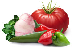 Ajo, habaneros, chil, tomatoi como elemento del diseño fotos de archivo libres de regalías