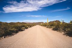 Ajo Mountain Drive, an unpaved road through Organ Pipe Cactus National Monument in Arizona.  stock photography