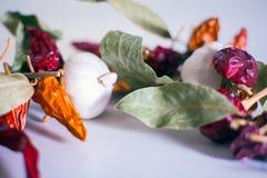 Ajos, pimientas de chile, hojas de la bahía Imagen de archivo