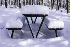 Ajournez et des bancs en parc après les chutes de neige lourdes Photographie stock libre de droits