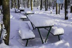 Ajournez et des bancs en parc après les chutes de neige lourdes Photos libres de droits