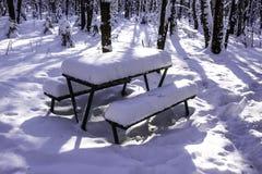 Ajournez et des bancs en parc après les chutes de neige lourdes Image libre de droits