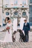 Ajouter élégants de mariage à deux chiens de race au centre de la ville européen antique Photo stock