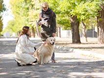 Ajouter au chien blanc Images stock