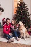 Ajouter au chien au christmastime Photo stock