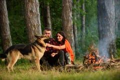 Ajouter au chien de berger allemand près du feu, fond de nature Image stock