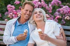 Ajouter au sourire de crème glacée  Images libres de droits
