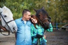 Ajouter aux chevaux Photos stock