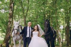 Ajouter aux chevaux Photographie stock libre de droits