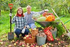 Ajouter aux légumes moissonnés dans le jardin Images libres de droits