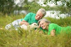 Ajouter aux moutons de jouet Photos libres de droits