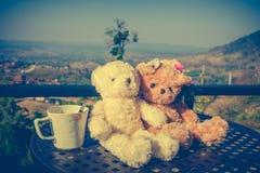 Ajouter d'ours de nounours de concept à l'amour et relations pour valent Photographie stock libre de droits