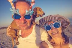 Ajouter gais à un petit chien prenant le selfie Images stock