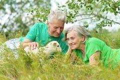 Ajouter pluss âgé aux moutons de jouet Image libre de droits