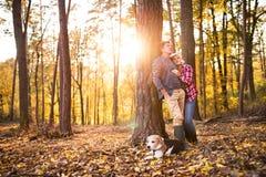 Ajouter supérieurs au chien sur une promenade dans une forêt d'automne Photo stock