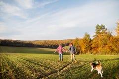 Ajouter supérieurs au chien sur une promenade dans une nature d'automne Image stock