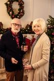 Ajouter supérieurs au vin à Noël Photographie stock libre de droits