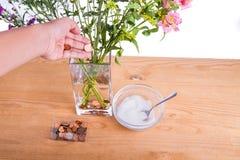 Ajoutez les pièces de monnaie en cuivre et le sucre dans le vase maintiennent des fleurs plus fraîches Photographie stock libre de droits